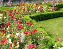 Top Four Ways To Brighten Up A Dull Garden