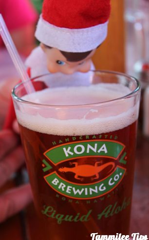 Kona the elf (from Tamilee Tips) liked the Kona Brewery!