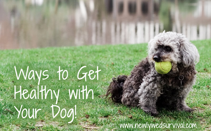 4 Ways to exercise with your dog #fitness #dogs