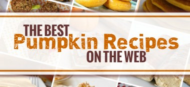 The Best Pumpkin Recipes on the Web