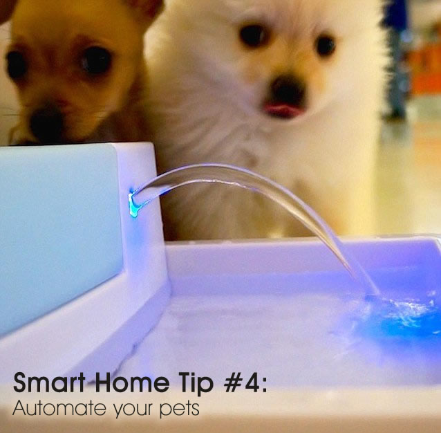 Top 5 tips for a smart home. Tip #4: automate your pets #DESmartHome sponsored @directenergy
