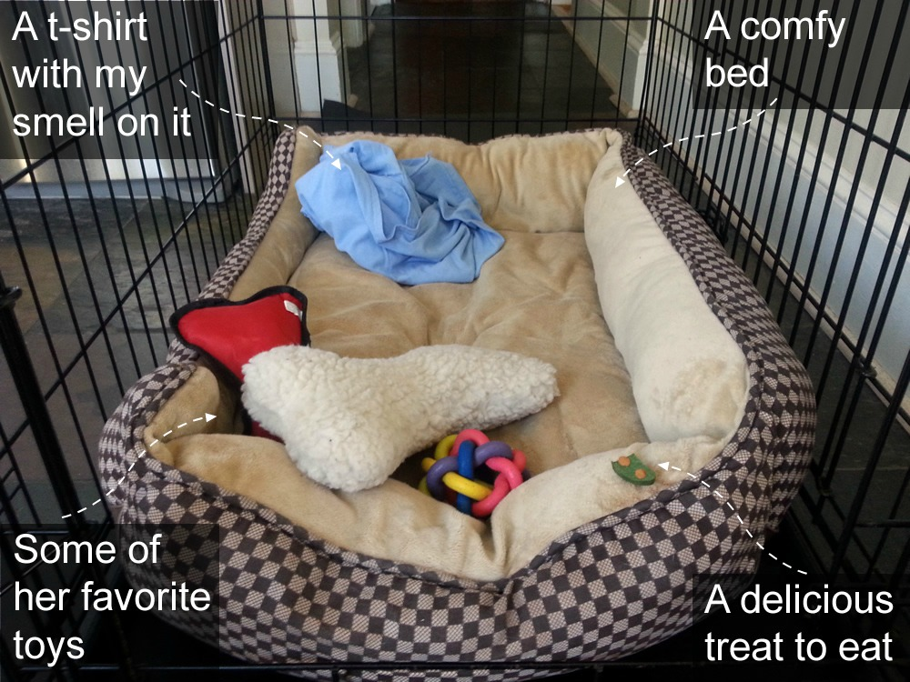 What to put in a dog crate to make it feel like home #CrateHappyPets #ad