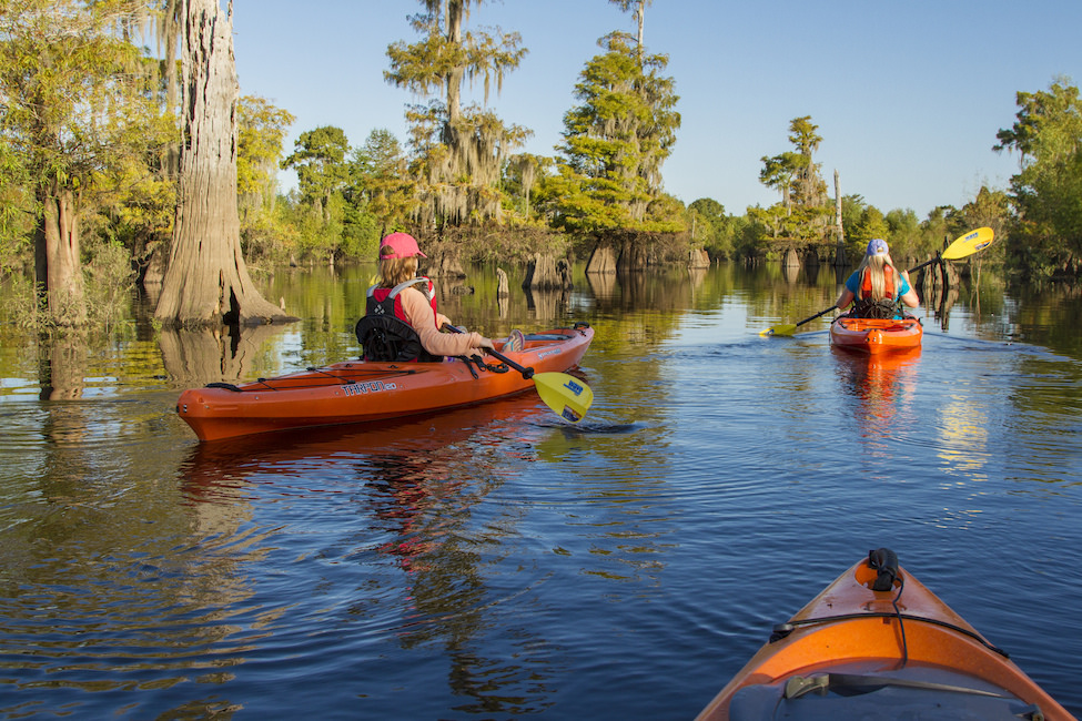 Kayak through the Dead Lakes in Gulf County Florida #GCFLnofilter