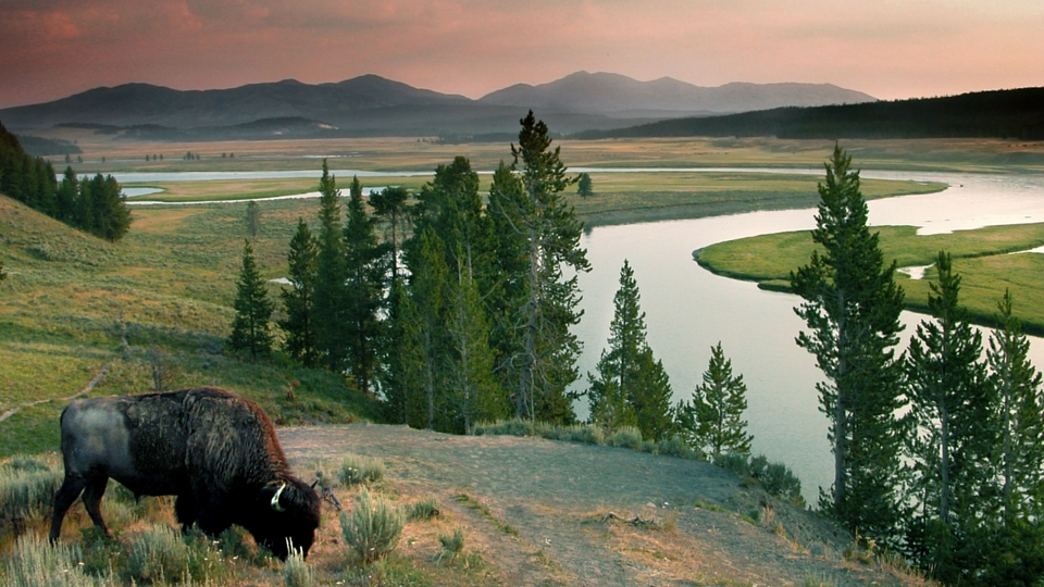 3 Of The Most Romantic Views In Yellowstone National Park