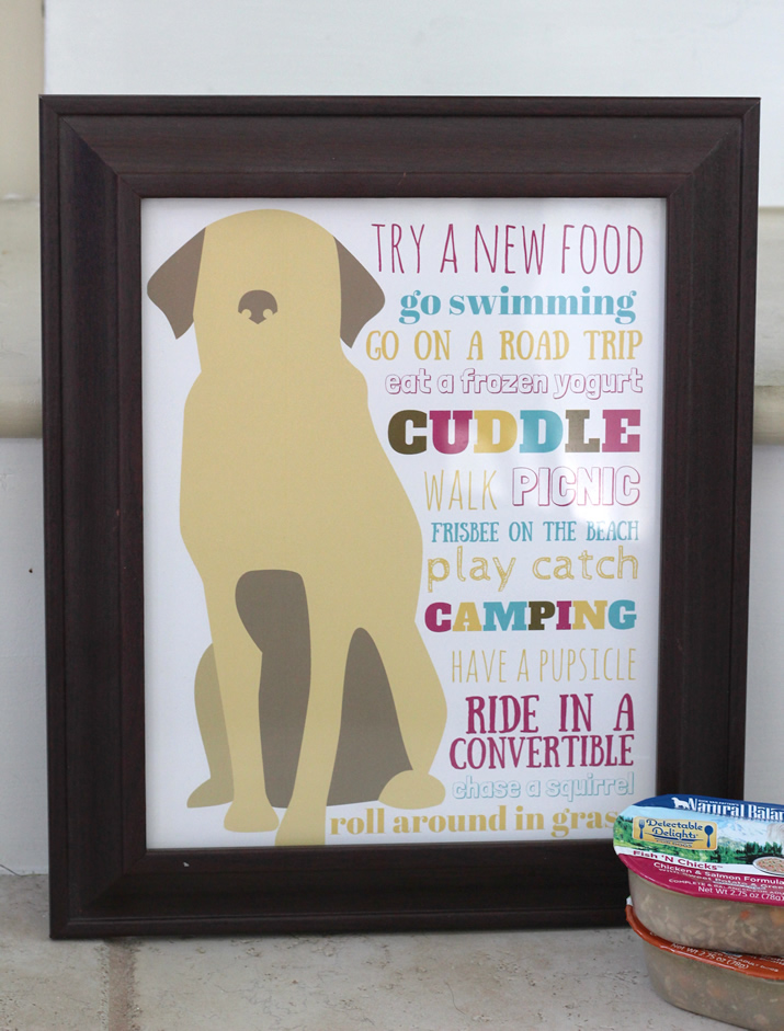 Completed Summer Bucket List for Dogs
