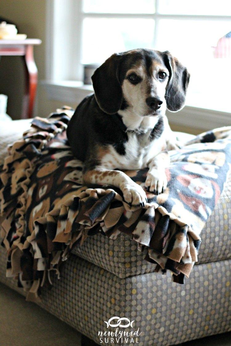 Easy Diy No Sew Fleece Blanket Treatingwithnutrish