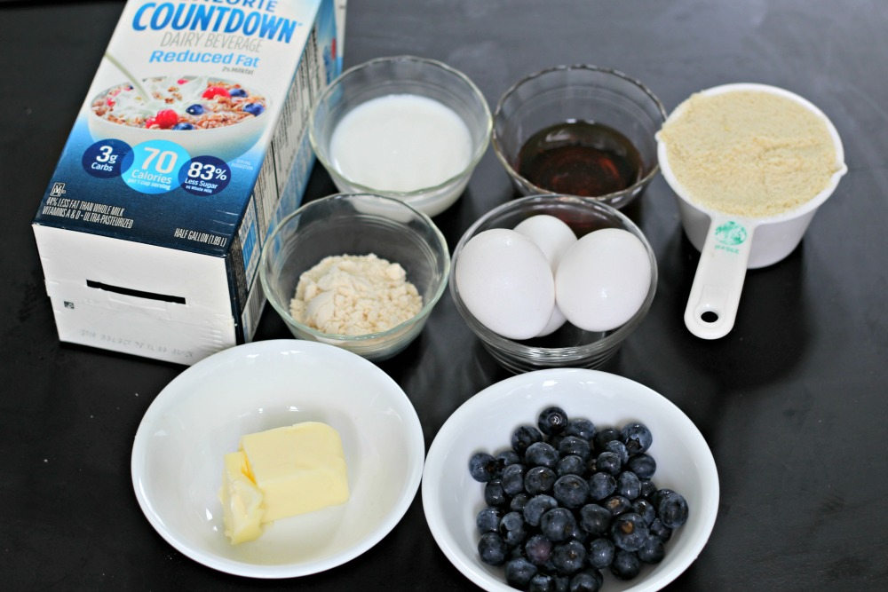 Low Carb Blueberry Pancake ingredients